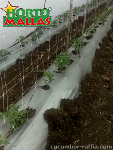 HORTOMALLAS, Installation is easier and faster.